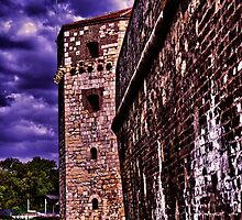 Tower Nebojsa Fortress Kalemegdan Belgrade by stockfineart