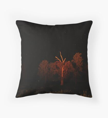 Farmyard Night Sky Throw Pillow