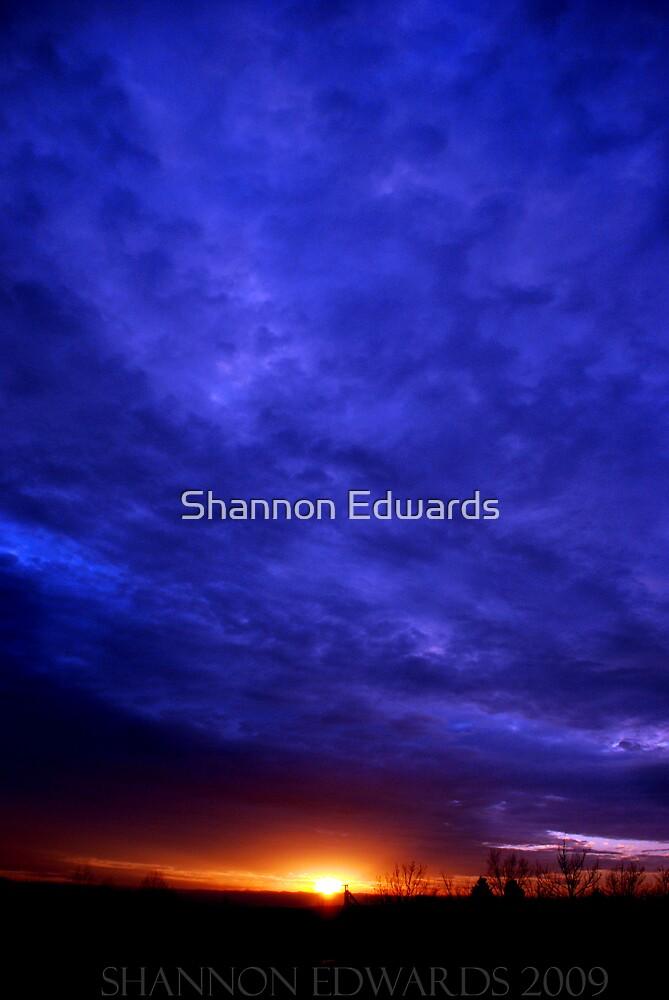 Genesis by Shannon Edwards