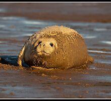 Ow mum do I really need a bath? by Shaun Whiteman