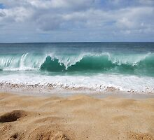 Waves at Waimea by Terra Berlinski