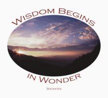 Wisdom Begins in Wonder Kids Clothes