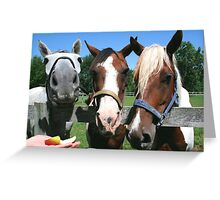"""Hero, Storm and """"New Girl"""" Greeting Card"""