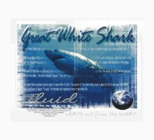 great white shark by redboy