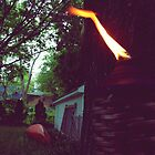 Tiki Torch & Canoe Too by jackshoegazer
