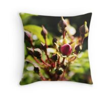 multiply Throw Pillow