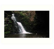 Bushkill Falls 10 Art Print