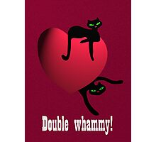 Double cat whammy Photographic Print