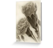 Pink Carnations 2 Antiqued Greeting Card