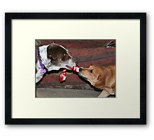 Dogs at play 2 Framed Print