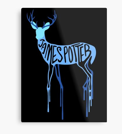 James Potter Metal Print