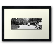 Horse & Carriage in Central Park Framed Print