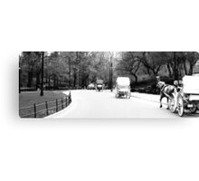 Horse & Carriage in Central Park Canvas Print