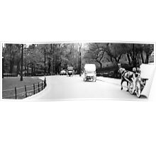 Horse & Carriage in Central Park Poster