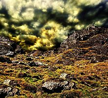 Top Of The Hill Fine Art Print by stockfineart