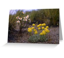Wild flowers 6 Greeting Card