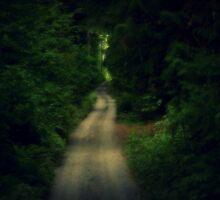 Narrow by Acia Lo