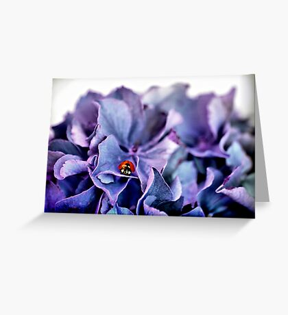 A Lady with the Blues Greeting Card