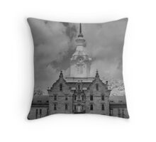 the asylum Throw Pillow