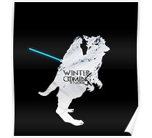 Space winter is coming !!! Poster
