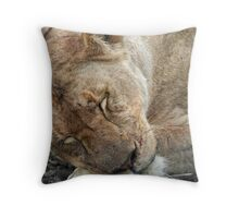 SLEEPING LIONESS Throw Pillow