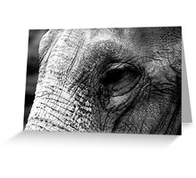 Beauty is in the eye of the beholder! Greeting Card