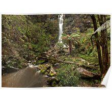 Erskine Falls • Victoria Poster