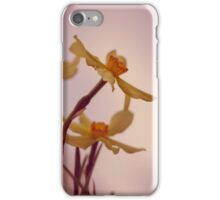 Narcissus 1 iPhone Case/Skin