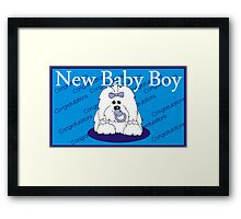 New baby Boy Coton de Tulear Framed Print