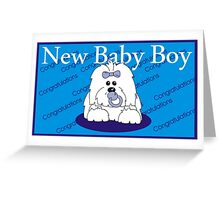 New baby Boy Coton de Tulear Greeting Card