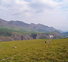 Atigun Gorge by Dandelion Dilluvio