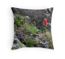 A Nook in the Rocks Throw Pillow