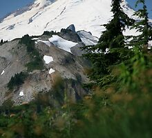 Mt Baker High   by lizalady