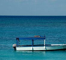 Caribbean Dream by Mark Elshout