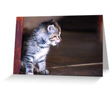 JUST... STAY.. AWAY FROM ME !!! Greeting Card