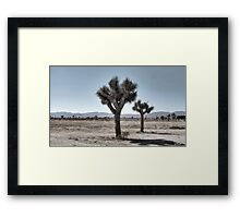 GRAY DESERT LAND Framed Print