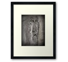 The Devil Doctor Framed Print