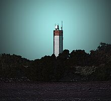 Lighthouse by Pam Walker