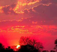VIBRANT SUNSET by Magriet Meintjes
