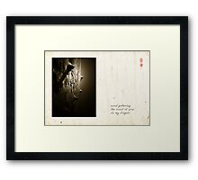 Scent Of Pine Framed Print