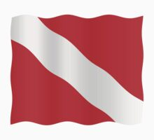 Diver down flag by stuwdamdorp