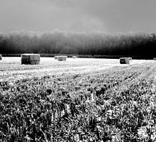 Straw Bales near Elkstone by John Bromley