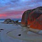 Squeaky beach dawn - Wilsons Prom by Tony Middleton