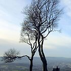 Looking over Cheltenham by John Bromley
