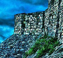 Ancient Ruins Fortress Kalemegdan by stockfineart
