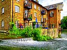 Coxes Mill and the Mill Race HDR by Colin  Williams Photography