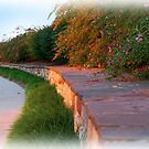 Stone Wall at Sunset by mrthink