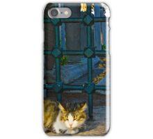 The Graveyard Cat iPhone Case/Skin
