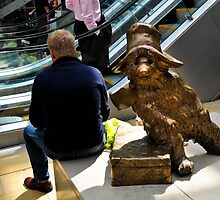 The Real Paddington Bear by DonDavisUK