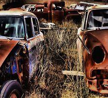 Side By Side   ( BoneYard Series ) by Carla Jensen